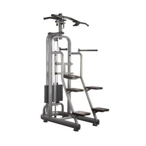 Technogym Selection Chin/Dip